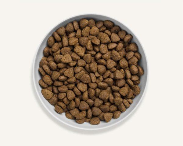 Canagan karma sucha dla psa - Kurczak z wolnego chowu 12 kg