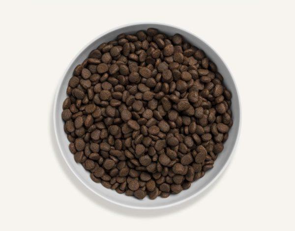 Canagan - Szkocki łosoś - 4 kg