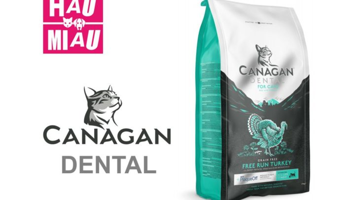 Canagan Dental Kot