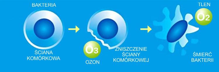 ozonowanie_dzialanie_bakterie